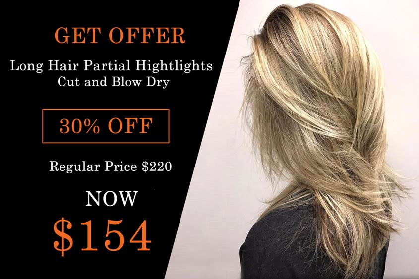 LONG HAIR PARTIAL HIGHTLIGHTS CUT AND BLOW DRY